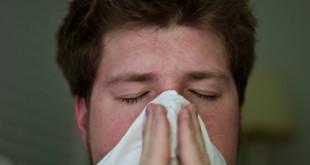 Ученые объяснили, почему жители городов обладают слабым иммунитетом