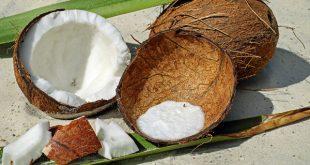Чистый яд — чем опасно кокосовое масло, объяснили ученые