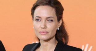 Анджелина Джоли находится на грани истощения