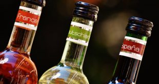 Ученые узнали, в каких странах больше всего пьют